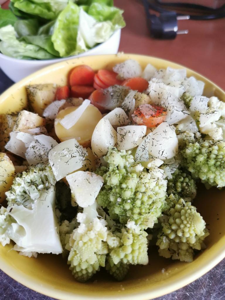 zoom assiette de chou romanesco aux carottes vegan et sans gluten médical médium compatible